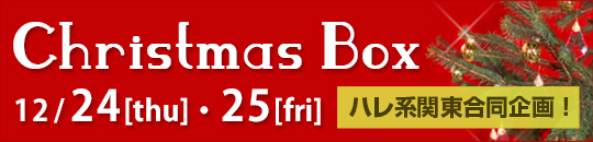 �n���n�֓��������^Christmas Box