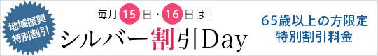 ����15��E16��̓V���o�[����DAY