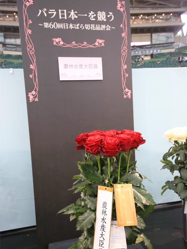 国際薔薇とガーデニンショー