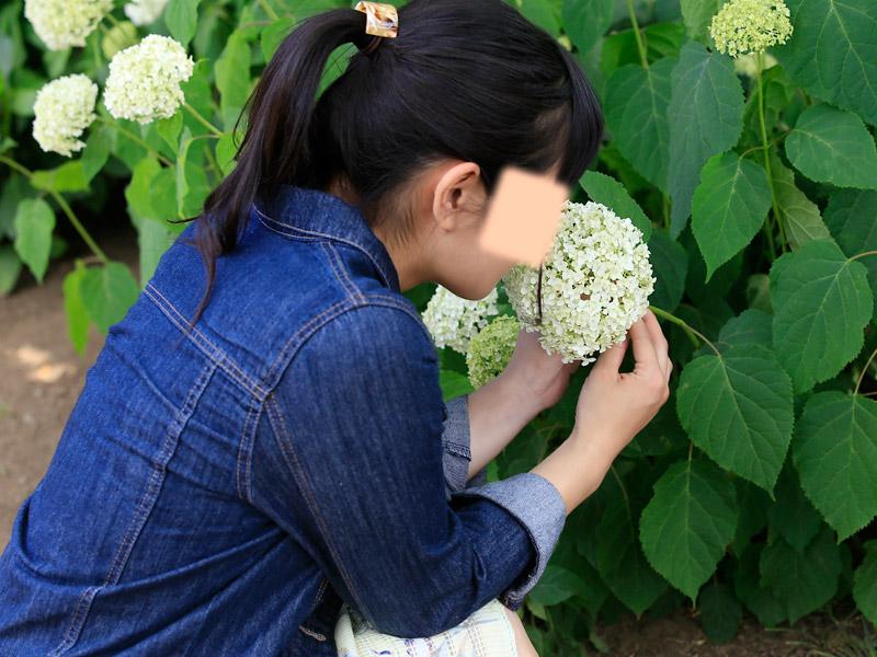 白間りほ 染谷花しょうぶ園