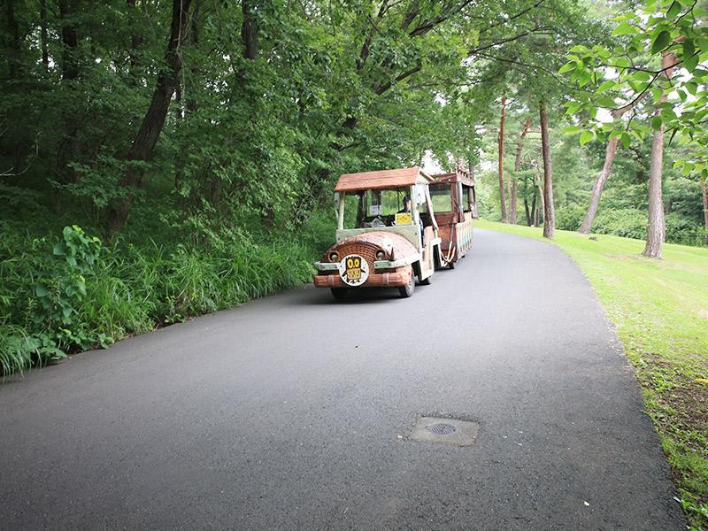 国営武蔵丘陵森林公園-中央口編